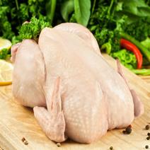 Мясо домашней утки с нашей фермы 1 кг